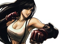 Final Fantasy VII video games concept art boxing sexy girl woman fighter drawing Home Decoration Canvas Poster