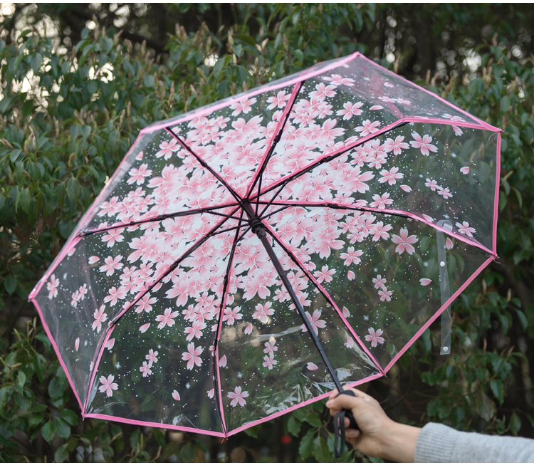 d52afb28173e New Full Automatic Transparent Umbrella Rain Women Folding Sun Rain ...