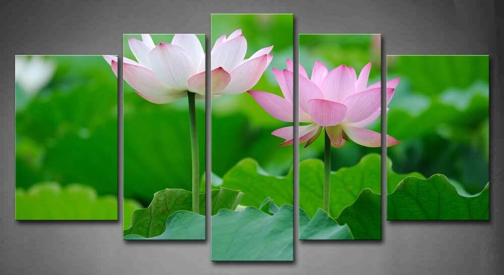 5 photos encadrées mur Art photos rose Lotus Bloom étang toile impression œuvre fleurs affiches avec des cadres en bois pour la décoration