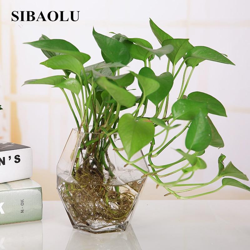 Fashion Geometric Small Glass Vase Modern Tabletop Flower