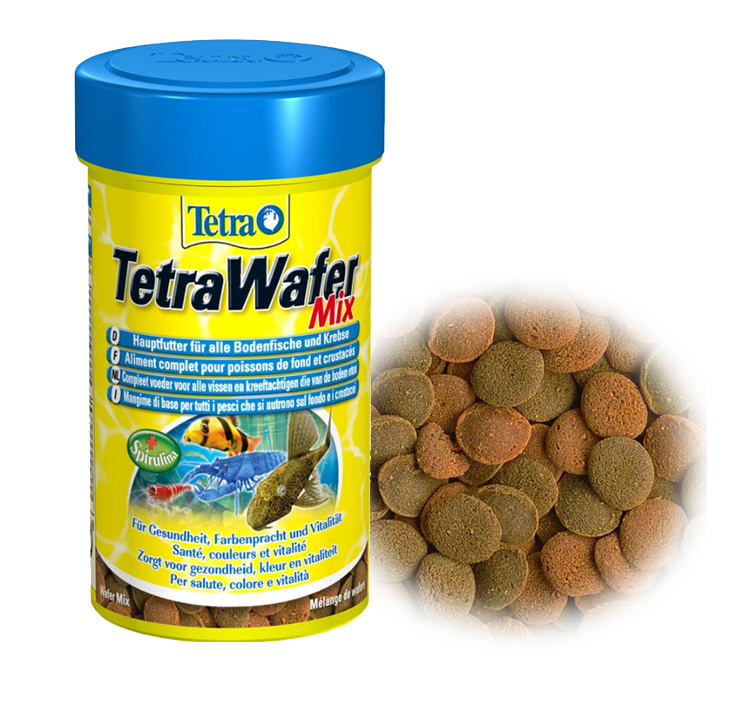 Tetra Wafer Mix Mini Suckermouth Catfish Benthic Fish Small Bottom