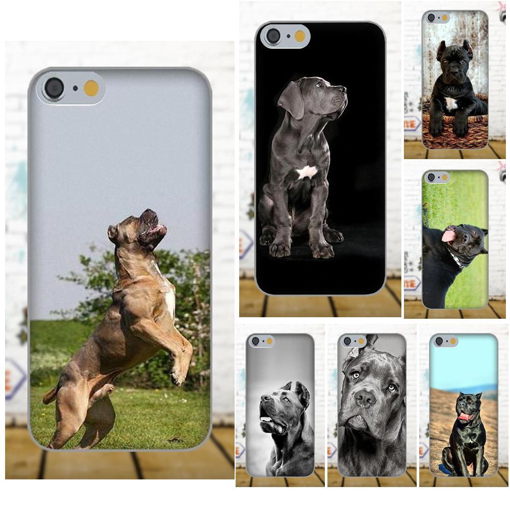 Italian Dogs Cane Corso Italian Mastiff For Apple iPhone 4 4S 5 5C 5S SE 6 6S 7 8 Plus X ...