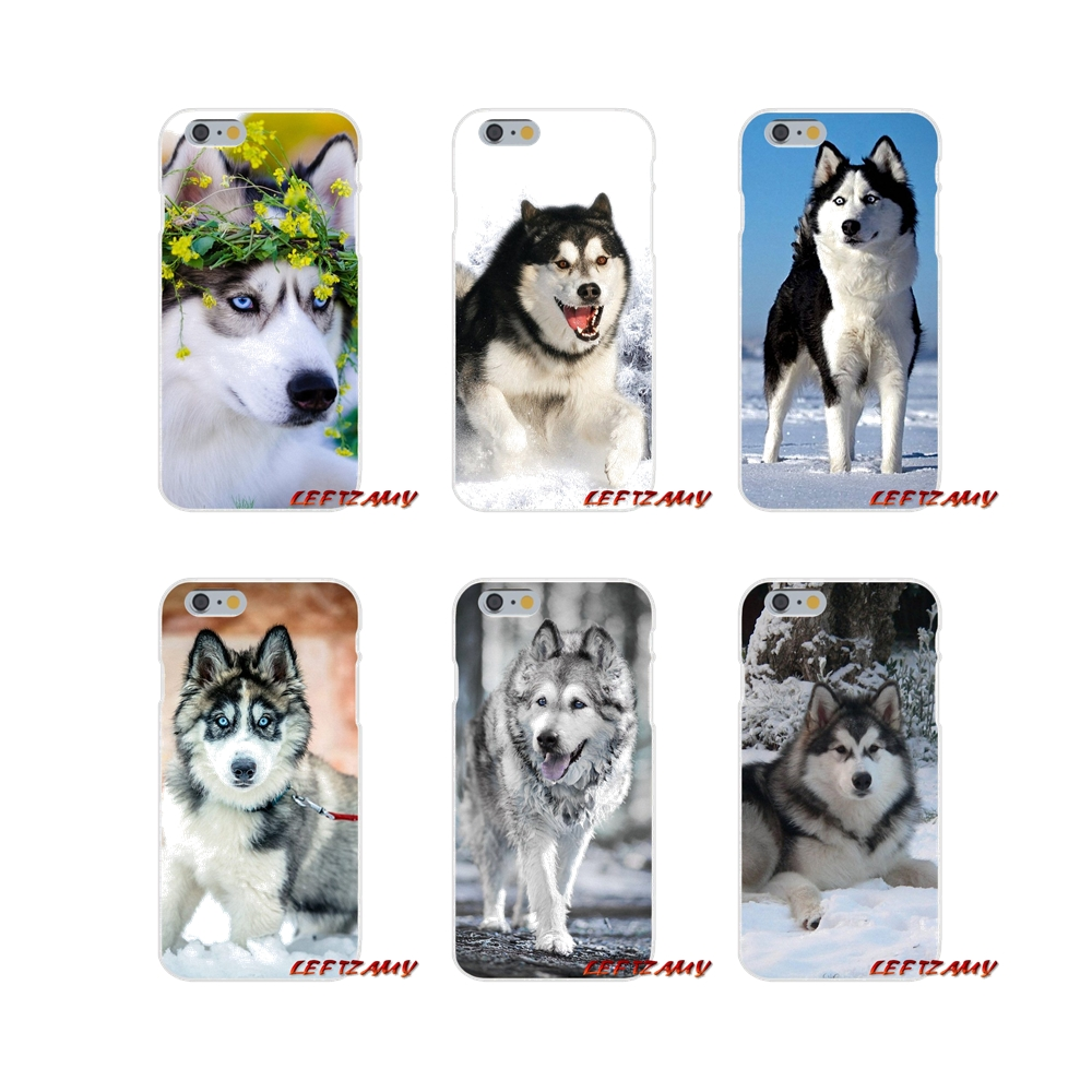Accessories Phone Shell Covers For Samsung Galaxy A3 A5 A7 J1 J2 J3 J5 J7 2015 2016 2017 Alaskan Malamute <font><b>Siberian</b></font> <font><b>husky</b></font> dog image