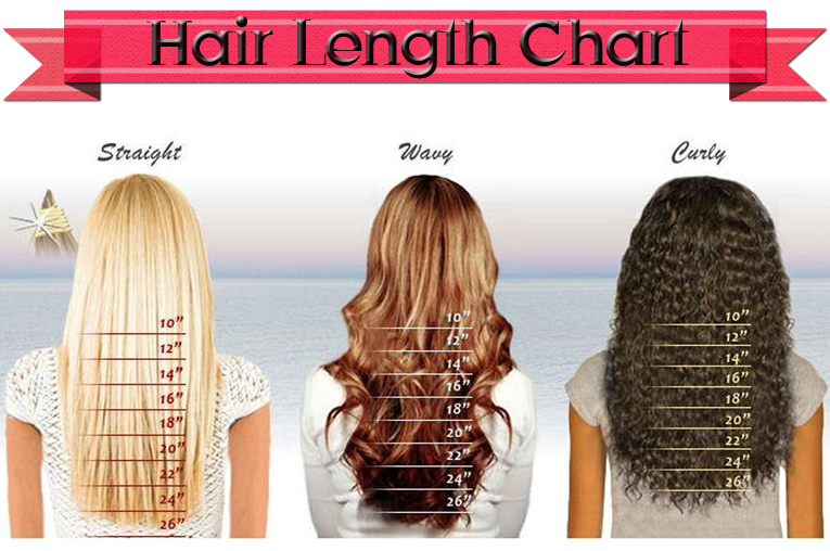 Black Wig Peruca Cabelo Humano Loiro Human Hair Glueless Full Lace