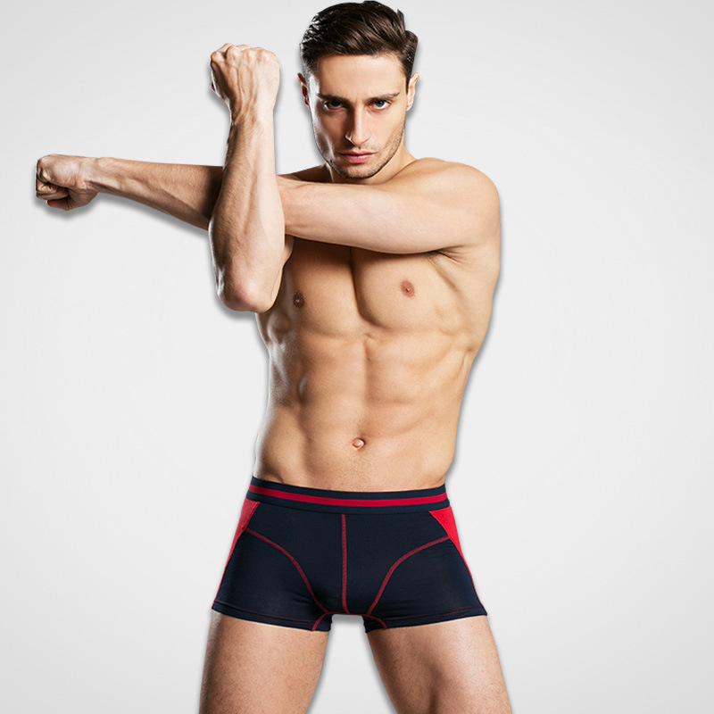 3 pieces / lot High quality Modal Fabric waistline pure color Men's underwear breathable male boxers triangle pant