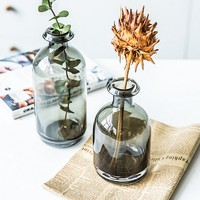 2018 NEW 1 Pieces Nordic style concise glass small mouth table vases Pretty desk decorative vases Home decoration
