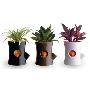 Creative Novelty Squirrel Plastic Garden Pots Creative Bonsai Plant Flower Pot For Office Desktop Decoration