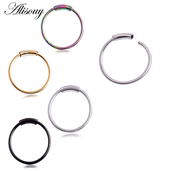 Alisouy Hinged Clicker Seamless Piercing Nose Ring Hoop Lip Ear Ring Body Jewelry 3