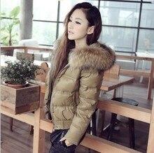 Бесплатная доставка-Большой енот меховой воротник короткий дизайн Женщины вниз пальто верхняя одежда