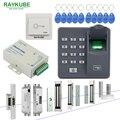 RAYKUBE система контроля допуска к двери с Биометрическим считывателем отпечатков пальцев электронный замок RFID замок безопасности комплект