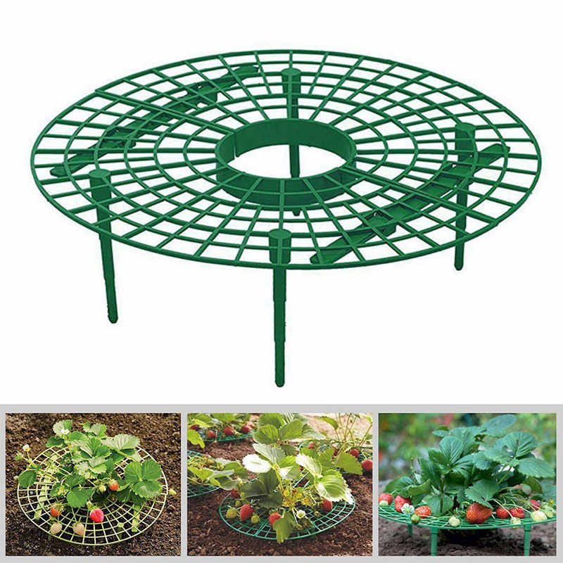 Plastic Creative Strawberry Supports for Vegetables Garden for Outdoor Greenhouse Strawberry Growing Gardening