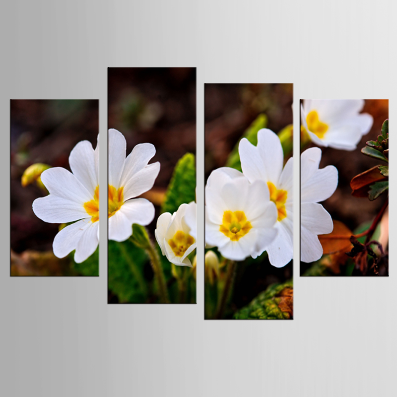 4 panouri HD flori albe plantă pictură pânză pictură artă - Decoratiune interioara