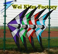 free shipping high quality 1.8m storm dual line stunt kite with handle line albatross kite stunt desert eagle rainbow birds