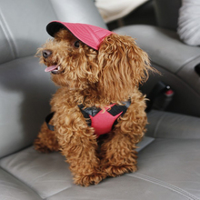 Sun Hat For Dogs Cute Pet