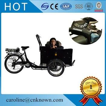 250 w bezszczotkowy silnik koła cargo bike street foos koszyk maszyna do lodów rower na sprzedaż