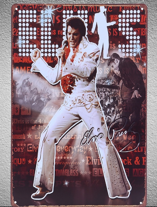 1 piece Elvis Presley Guitarist Singer Celebrity sign Tin Plate Sign wall Room man cave Decoration Art Dropshipping Poster metal in Plaques Signs from Home Garden