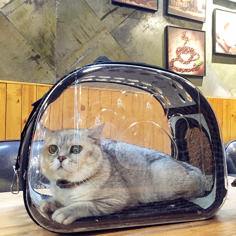 Gomaomi Transparent Pet Cat Carrier Foldable Pet Dog Travel Kennel Portable Pet Carry Handbag