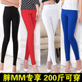 Plus size plus size legging spring and autumn thin mm pants 200 high waist pencil trousers