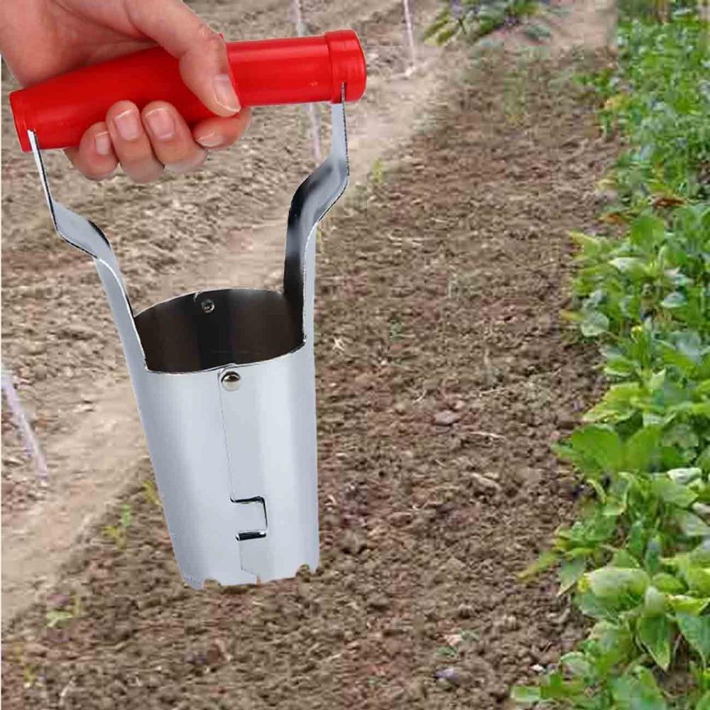 witte stalen zaailingen van groenten getransplanteerd met - Tuinbenodigdheden