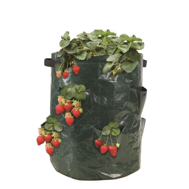 11 gallon jahodový planter Bag Growing Bag s 8 kapesní planter Grow Bag