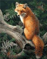 No Frame Fox Animals DIY Painting By Numbers Kits Paint On Canvas Acrylic Coloring Painitng By