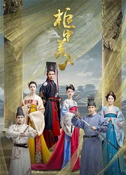 《柜中美人》2018年中国大陆剧情,爱情,古装电视剧在线观看