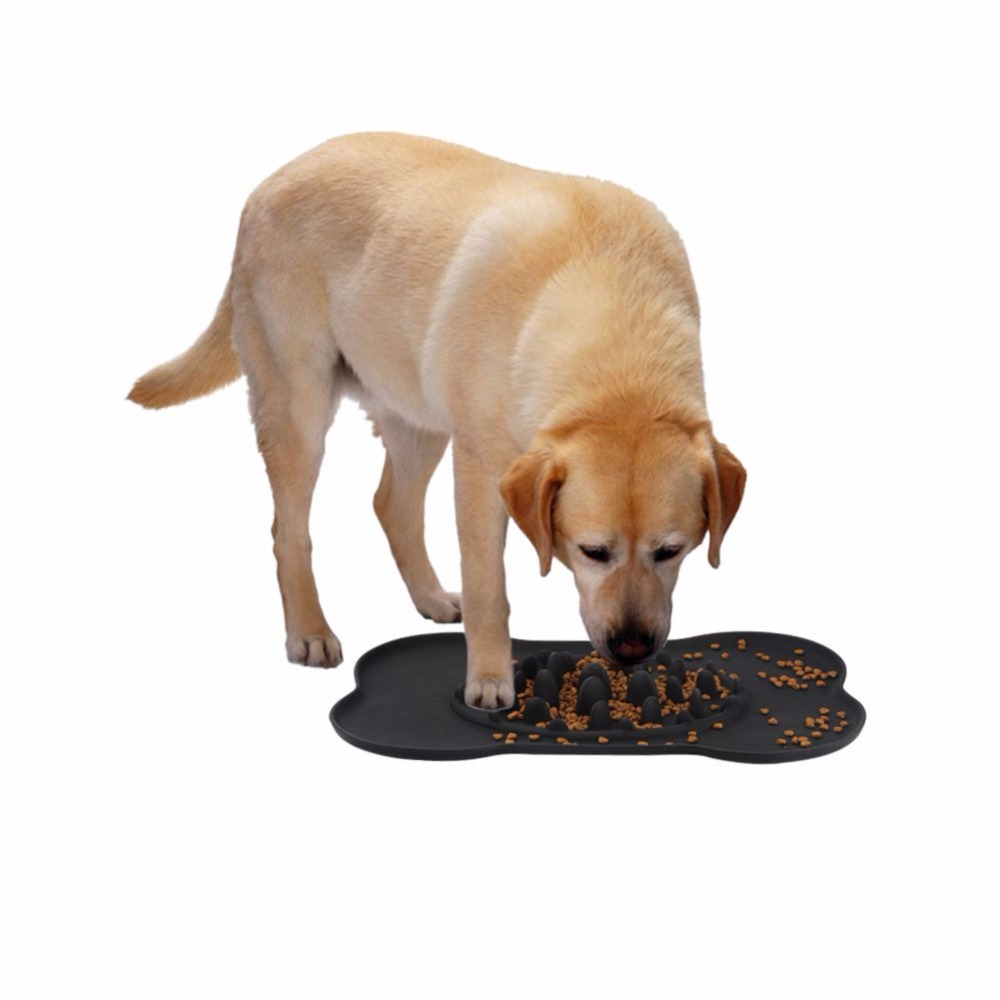 Dogs Eating Out Of Dog Bowls