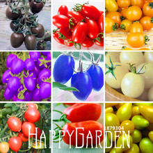 Big Promotion!9 Kinds Of Cherry Tomatoes Seed Fruits Seed Vegetables Potted Bonsai Potted Plant Tomatoes Seeds 100 Seeds/lot,#AG
