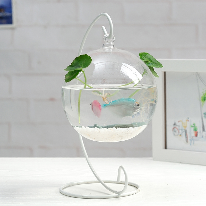 Free Shipping Glass Ball with 2 Small Holes Hanging Glass Terrarium Vase Wedding Decorative Props Glass Crafts China Supplier