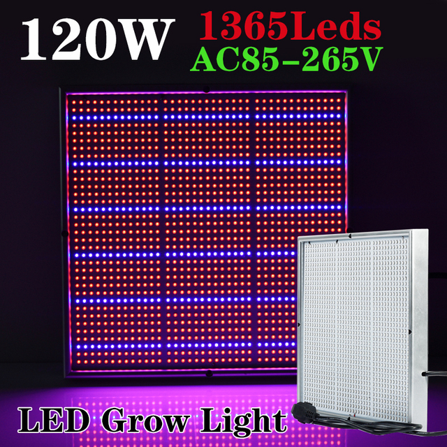 1365X LEDs 120W LED Grow Lights Full Spectrum 410-730nm For Indoor Plants and Flower Phrase, Very High Yield.
