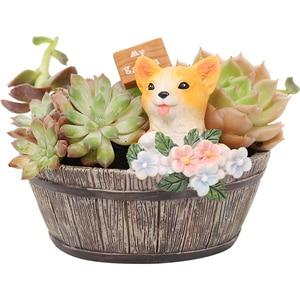Image 5 - Roogo American Style FlowerPots Resin Flower Pots For Home Garden Decoration Wood Bonsai Pot Succulents Planters Orchids Cactus