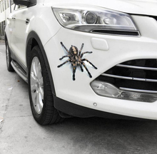 High Quality 3D Spider Scorpion Animal Print Car Window Bumper Body Decal Sticker Waterproof OCT-35