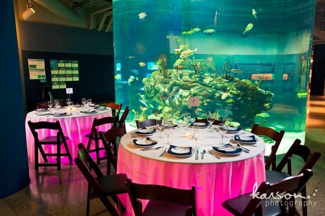 60 pçs/lote Multicolors Recarregável 100 M RF Controle Remoto LED RGB Sob A Mesa de Iluminação Mesa de Luz Para A Festa de Casamento Evento