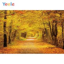 Yeele Autumn Forest Road Scenery Wedding Wallpapers Personalized Photography Backdrops Photographic Backgrounds For Photo Studio