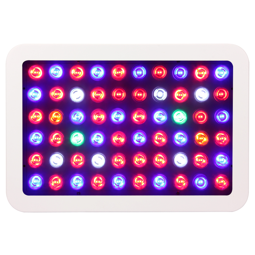 Dimmable 300W LED Grow light Full Spectrum led l& For Plants Growing And Flowering indoor grow box/tent hydroponics systems20-in LED Grow Lights from ...  sc 1 st  AliExpress.com & Dimmable 300W LED Grow light Full Spectrum led lamp For Plants ...