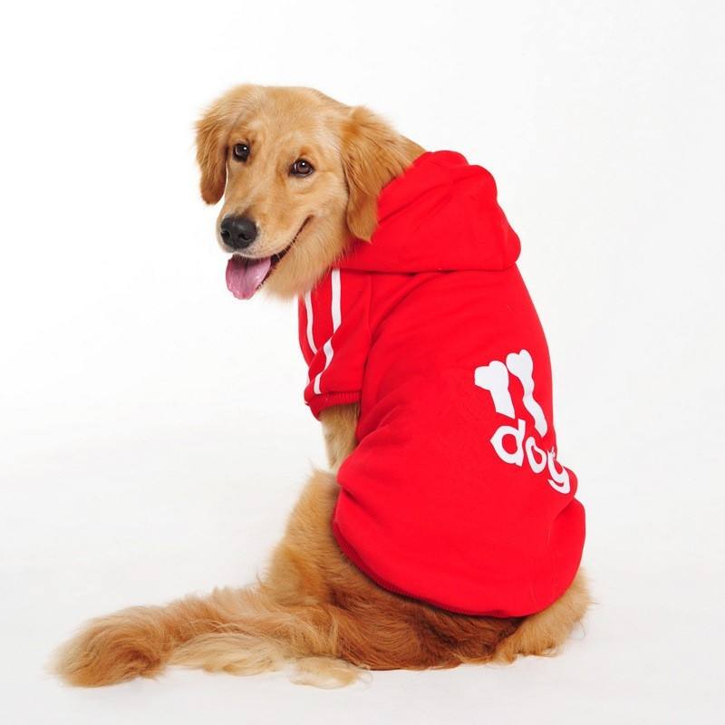 Compra ropa golden retriever online al por mayor de China