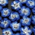 6 colores 20 unids/set 3D cerámica flor piedras Nail Art Stickers Tips diseño decoraciones de DIY diseño elegante
