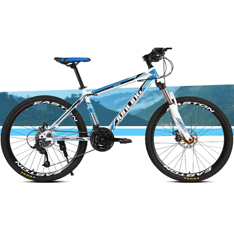 High Quality Carbon Steel Material 24 Speed 21 Inch Straight Handlebar Bicycle Supplier Wheel Mountain Bike