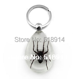 Real Bug Spider in Resin Amber Keychains 612c60843a7d