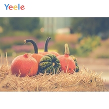Yeele Halloween Pumpkin Haystack Baby Child Photography Background Children Party Photographic Backdrop For Photo Studio