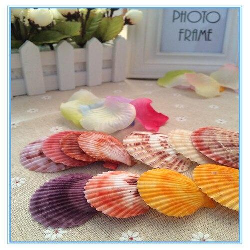 Natural conch shells manualidades trumpet shells metope adornment aquarium accessories creative sea shells bench decor