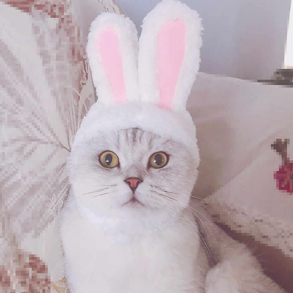 2019 New Dog Pet Bunny Rabbit Ears For Cat Small Dogs Kitten Party #NN01017