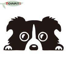 Border Collie Dog Reflective Glass Rear Car Sticker