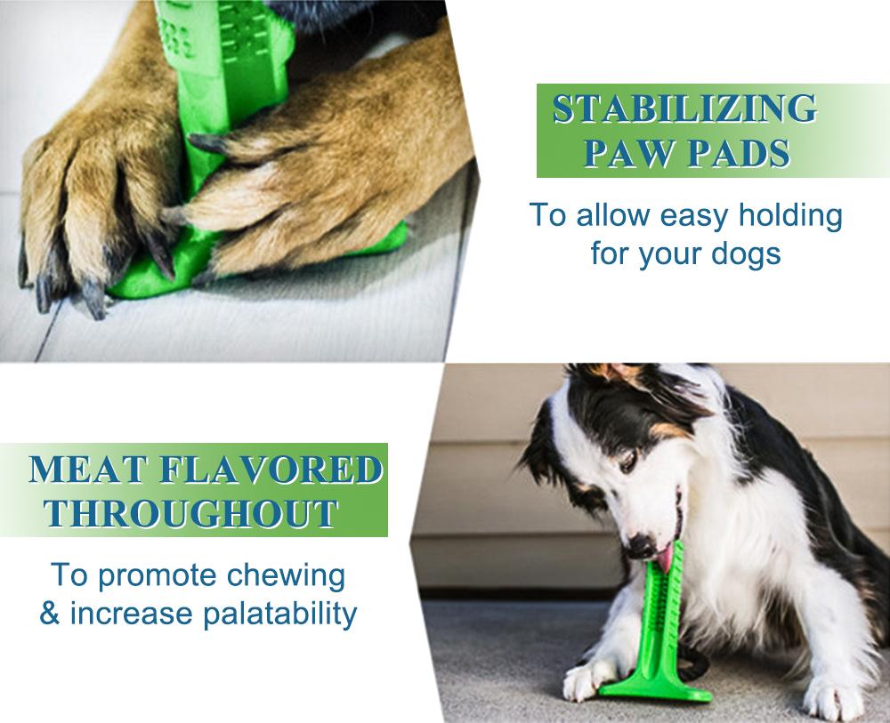 Juguete para limpiar los dientes para perro 3