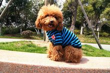 D24 dog summer T-shirt 100% cotton clothes pet summer clothes