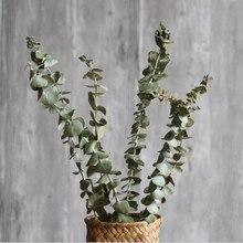 eucalyptus natural dry branch flower arrangement indoor soft equipment furnishings art props props home decoration - Branch Flower Arrangements