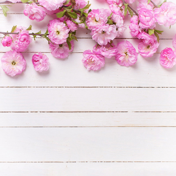 Newborn baby flower photography backdrop background printed with peach blossom and white plank wood floor D-9599 Одежда