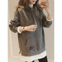 2019 Autumn Women Hoodie Casual Long Sleeve Hooded Pullover Sweatshirts Hooded Female Jumper Daily Tracksuits Sportswear Clothes