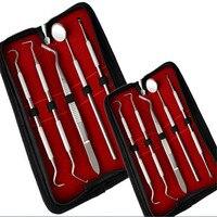 A0125 5Pcs Stainless Dental Tool Set Kit Dentist Teeth Clean Hygiene Picks Mirror Oral Care