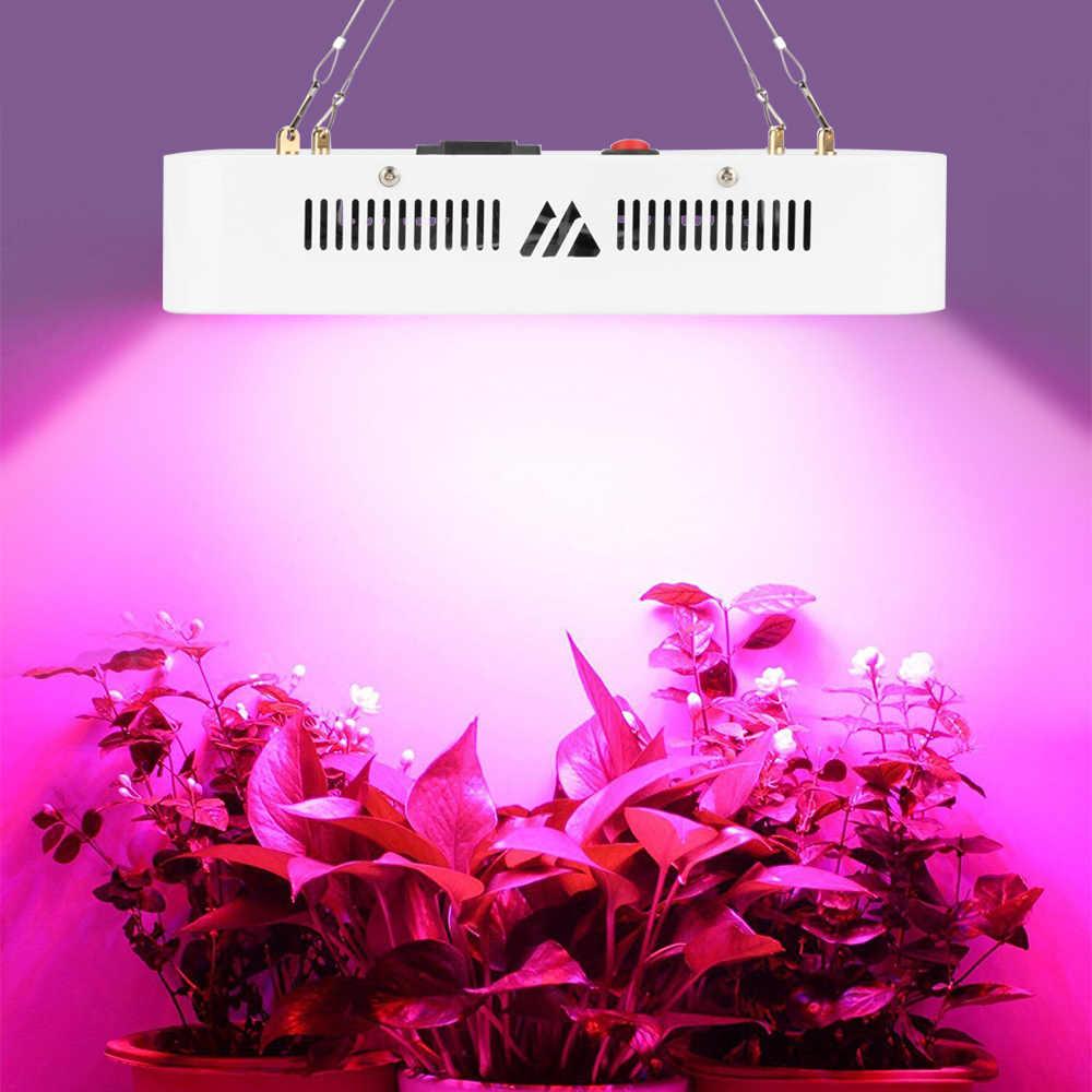100 светодиодный s 300 W светодиодный свет для выращивания всего спектра для внутреннего теплицы садоводства растений выращивания гидропонных цветов травы посадки